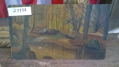 15K24958 SMALL UNFRAMED FOREST POND.jpg