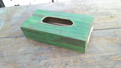 15K24994 GREEN TISSUE BOX.jpg