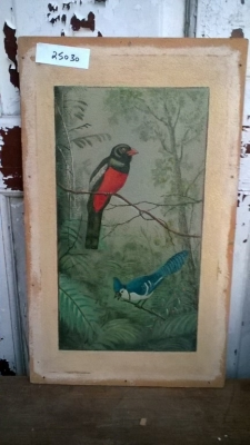 15K25030 UNFRAMED BLACKBIRD AND BLUEJAY.jpg
