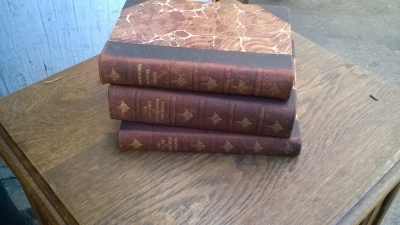 15L10 SET OF LEATHER BOOKS (4).jpg