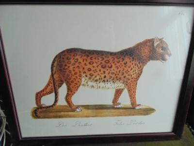 14a27754 Leopard engraving.JPG