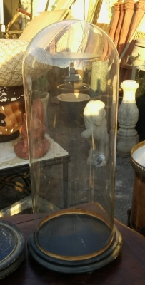16J05024 LARGE GLASS DOME ON BASE.jpg