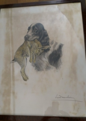 14E DOG ENGRAVING AS IS