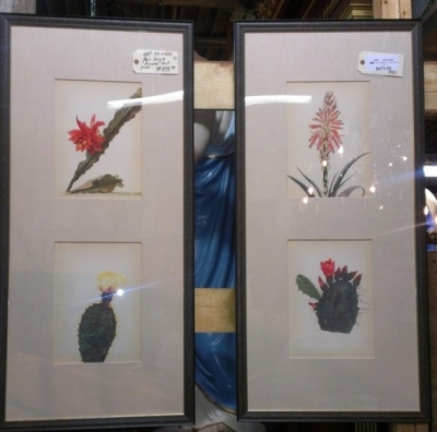 14G21 PAIR CACTI PRINTS IN NICE MATS AND FRAMES LARGE