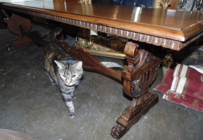 36 LONG CARVED ITALIAN BENCH (4)