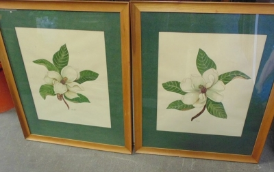 14C24491 PAIR LARGE MAGNOLIA BLOSSOMS IN FRAMES