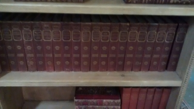 36-LARGE SET OF LEATHER BOOKS (1).jpg