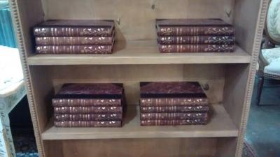BOOKSHELF AND BOOKS.jpg
