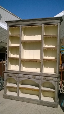 15J15 LARGE APOTHECARY CABINET (1).jpg