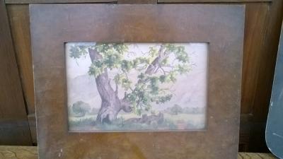 15K24526 SMALL BROWN FRAMED OLD OAK TREE.jpg