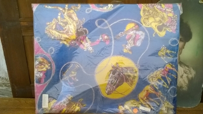 15K24529 BLUE AND YELLOW COWBOYS AND HORSES PRINT.jpg