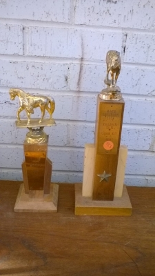 15K24579 PAIR OF HORSE TROPHIES.jpg