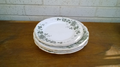 15K24583 GREEN AND WHITE PLATES.jpg